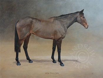 Ask Dillon - Thoroughbred Racehorse painting