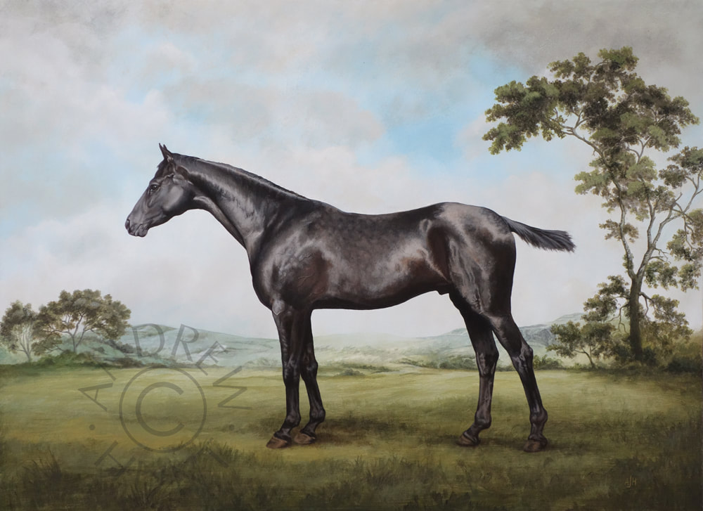 Equestrian painting for sale - Black stallion - Classical study