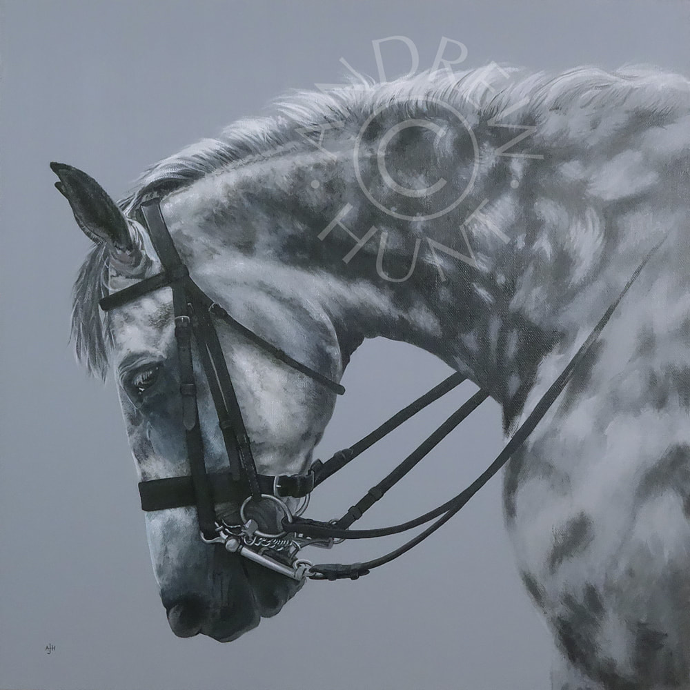 Equestrian painting for sale - Dapple on grey